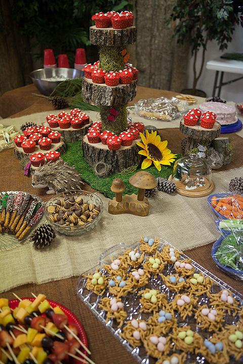 Woodland Wonderland Birthday Party!