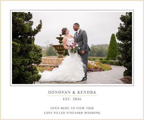 Childress Vineyard Wedding in Concord NC